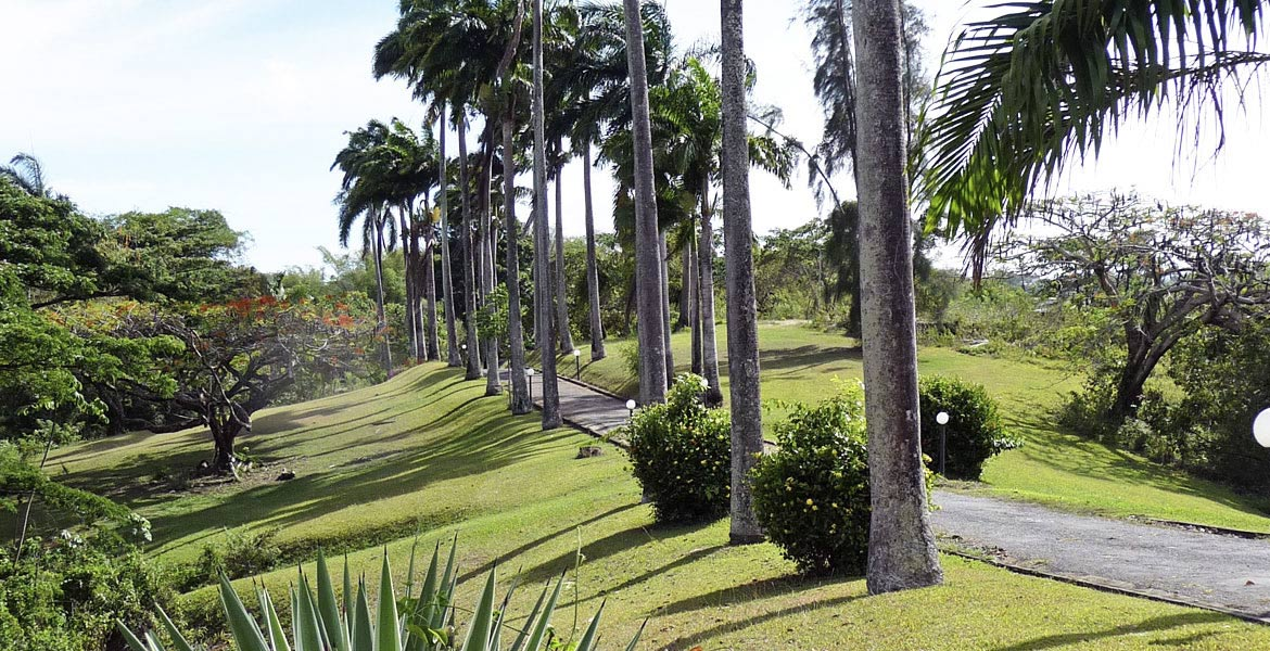 Arcadia - a myTobago guide to Tobago holiday accommodation