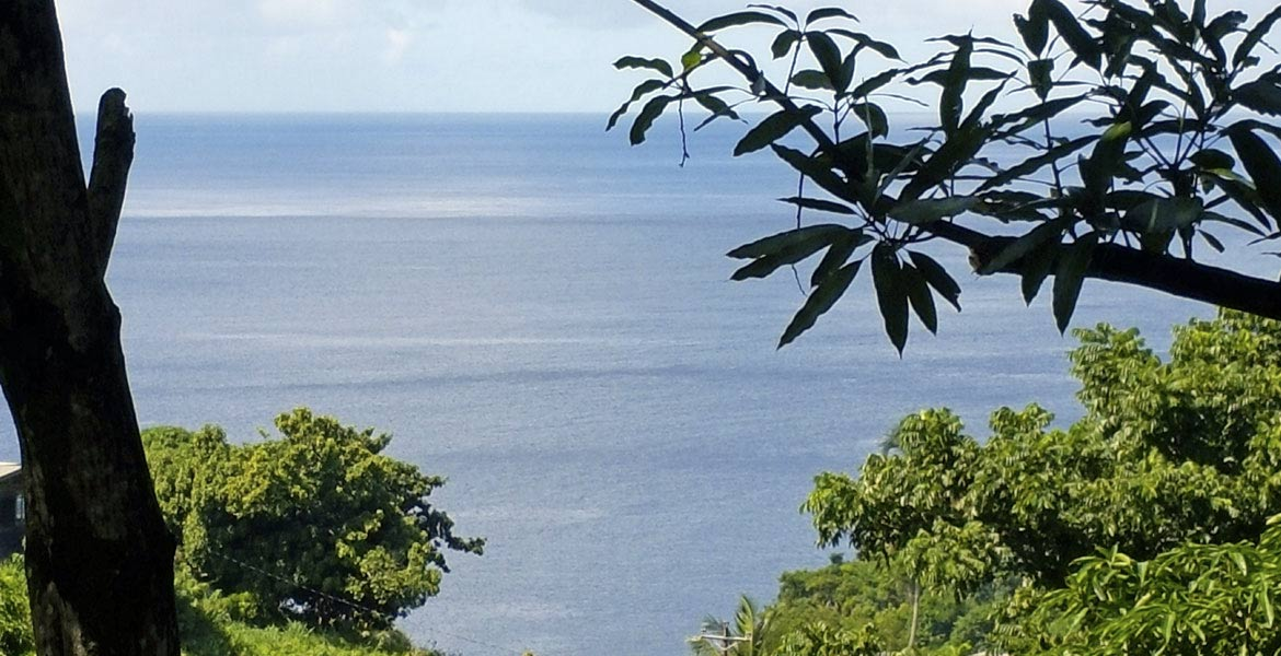 Cottage Mango - a myTobago guide to Tobago holiday accommodation