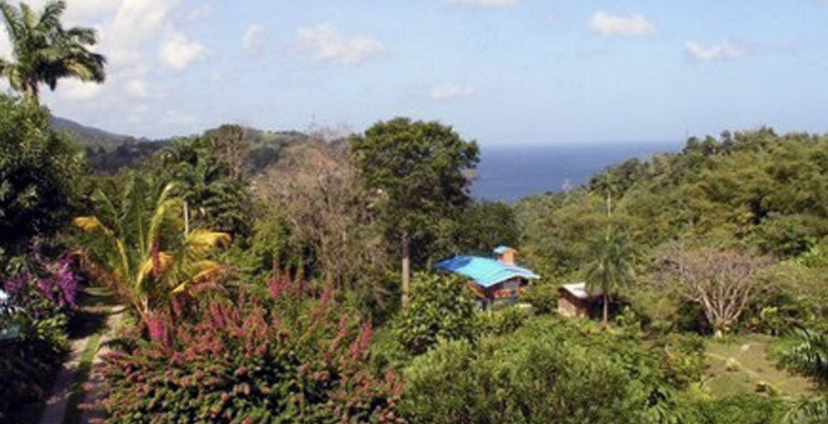SillyCotton Valley - a myTobago guide to Tobago holiday accommodation
