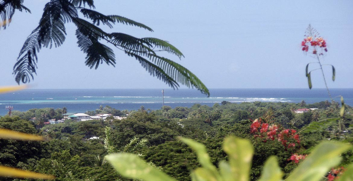 The Nest Tobago Apartments - a myTobago guide to Tobago holiday accommodation