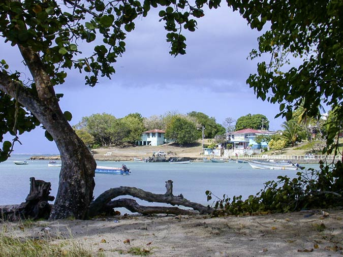 Buccoo Village from the Beach, Tobago
